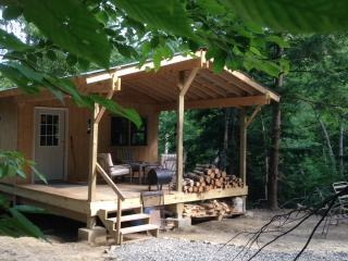 Cabin Creek Hide-Away (Letchworth Park) - Dalton vacation rentals