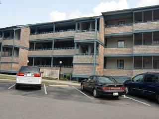 Myrtle Beach Vacation Rental with a Jacuzzi and Pool, Summer Tree Village E-11 - Myrtle Beach vacation rentals