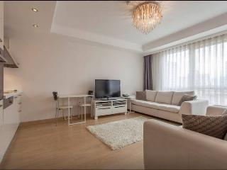 So Chiq 1+1 Flat in Istanbul - Istanbul vacation rentals