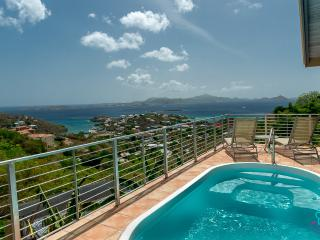 Ylang Ylang Luxury Villa Aug/Sep Special now - Cruz Bay vacation rentals