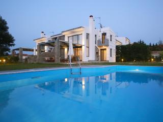 SUNNY SANI LUXURY VILAS -PRIVATE SWIMING POOL B6 - Sani vacation rentals