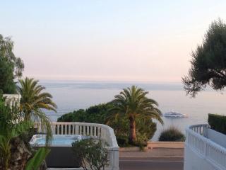 Villa Boron- 5bed Villa with pool & jacuzzi - Nice vacation rentals