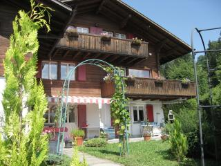 Chalet Wildhorn. 2 Apartments Middle and Upper Flo - Beatenberg vacation rentals