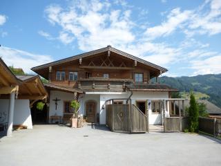 Sonnblick Apartments & Chalet - Muhlbach am Hochkonig vacation rentals