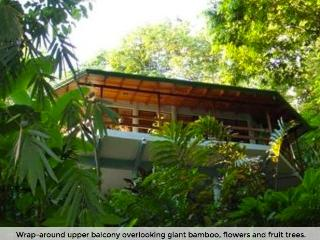 Exotic Escape Rainforest Home - Quepos vacation rentals