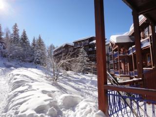 EXPO PLEIN SUD :TRES BEL APARTEMENT DANS RESIDENCE - Les Arcs vacation rentals