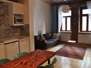 Vintage Flat in Taksim - Istanbul Province vacation rentals