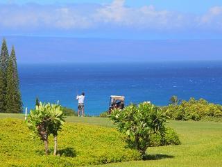 Spacious Luxury Ridge Vills Sleeps 4 - Kapalua vacation rentals