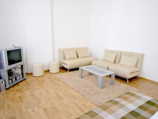 1-bedroom apartment Proreznaya 18/1G - Kiev vacation rentals