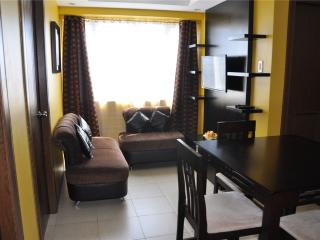 2 BR @ Ridgewood Tower-3-17th near SM AURA Mall - Taguig City vacation rentals