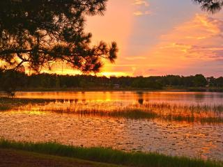 Perfect Spot for Sunsets Shimmering over the lake - Orlando vacation rentals