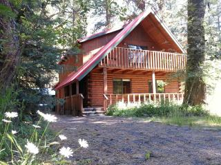 Spacious Lake Shore Ponderosa Cabin Great Location - McCall vacation rentals