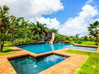 HUGE Tropical 5 Acre Retreat - Sleeps 14 Guests - Kilauea vacation rentals