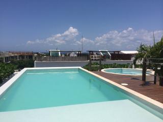 New condo: rooftop pool & jacuzzi, priv. terrace - Playa del Carmen vacation rentals