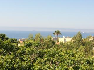 Roussos Sunshine maisonette - Limassol vacation rentals