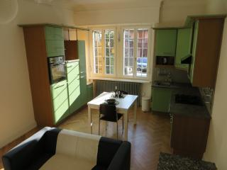 Joli 2 pièces avec garage et jardin - Mulhouse vacation rentals