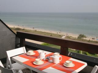 CARNAC PLAGE BRITANNIA 2 pièces face mer - Carnac vacation rentals
