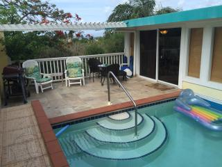 Exquisite LUXURY  POOL/BEACH VILLA.  ON BUS ROUTE - East End vacation rentals