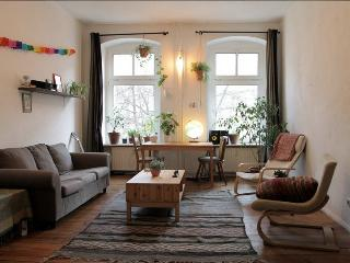 BIG FLAT IN KREUZBERG - Berlin vacation rentals