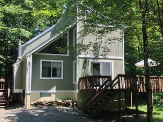 Peaceful Arrowhead Lake Retreat w/Fplc, Fpit, WiFi - Pocono Lake vacation rentals