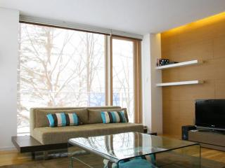 Yama Shizen - 1 Bedroom Condo - Niseko-cho vacation rentals