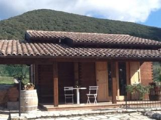 CHALET DI CHARME NELLE COLLINE UMBRE !! - Massa Martana vacation rentals