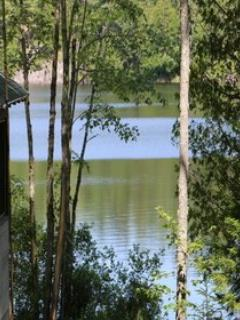 Big Woods -NEW! All of Sept Open! - Blue Hill vacation rentals