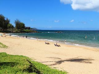 HALE PAU HANA, #11* - Kihei vacation rentals