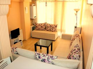 Taksim 3 bedrooms apartment near sea&metro - Istanbul vacation rentals
