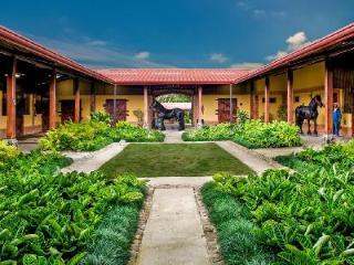 Opulent Hacienda Santa Ines with massage room, gym & equestrian center - Cartago vacation rentals