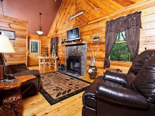Pinetree Lodge - Helen vacation rentals