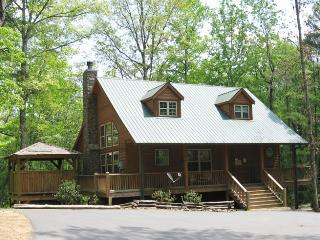 Bobcat Lodge - Helen vacation rentals