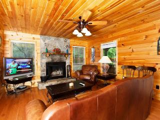 Trout Lily - Helen vacation rentals