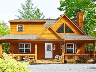 Hummingbird Lodge - Helen vacation rentals