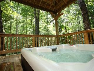 Hickory Woods - Helen vacation rentals