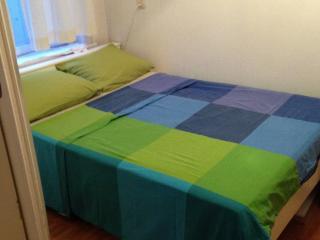 Room in Amsterdam - Amsterdam vacation rentals