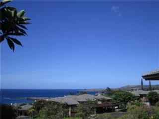KAPALUA RIDGE VILLA #1422 - Kapalua vacation rentals
