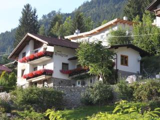 Haus Evelyne - Oetz vacation rentals