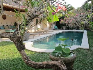 Lovely Traditional 2-3 bedr Villa Aisis in Seminyk - Seminyak vacation rentals