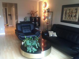 BEAUTIFUL RICHMOND TOWNHOME CLOSE TO AIRPORT - Richmond vacation rentals