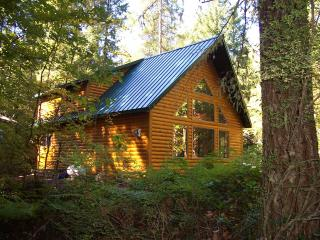 Mt Hood Log Chalet has pool, htub, ac, wifi - Rhododendron vacation rentals