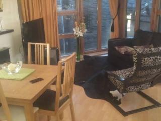 Dublin Central 2 bedroom apartment rental - Dublin vacation rentals