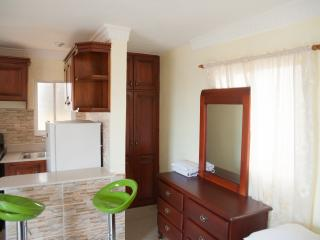 Studio Apartment Speeps 2 - Santo Domingo vacation rentals