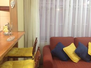 Alquiler  Apartamento en Vina del Mar Renaca Chile - Vina del Mar vacation rentals