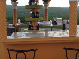 Breathtaking  villa, food, booze,pool for less - Falmouth vacation rentals