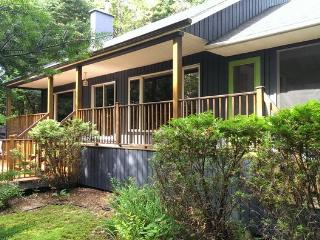 Charming waterfront chalet - whisper quiet! - Mont Tremblant vacation rentals