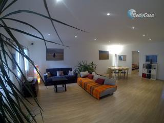 Bed and Breakfast in Strasbourg, at Tony's place - Strasbourg vacation rentals