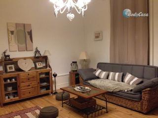 Charmant appartement - Saint-Étienne vacation rentals