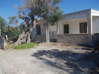 estate a Gallipoli - Gallipoli vacation rentals