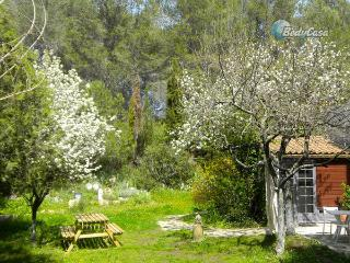 Independent room to let in Castelnau-le-Lez, at Marielle's place - Castelnau-le-Lez vacation rentals